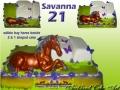 SAVANNAHS 21ST
