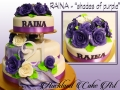 RAINA SHADES OF PURPLE