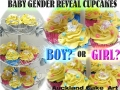Baby Shower gender reveal cupcakes