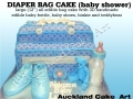 Designer Diaper/Nappy Bag 2