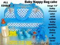Designer Diaper Bag