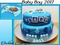 BABY BOY 2017