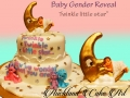 BABY GENDER REVEAL (STAR)