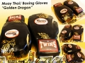 MUAY THAI GOLDEN DRAGON GLOVES