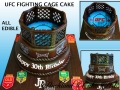 UFC FIGHTING CAGE