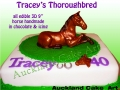 TRACEYS HORSE