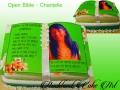 CHANTELLE BIBLE - GIFT CAKE