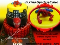 JAXINS SPIDEY