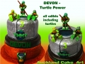 DEVON TURTLES