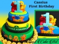 CASSIUS FIRST BIRTHDAY