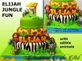ELIJAH JUNGLE FUN