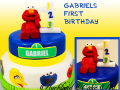 GABRIELS FIRST BIRTHDAY
