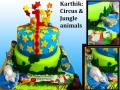 KARTHIK ANIMALS