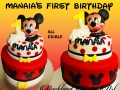 MANAIA'S FIRST BIRTHDAY
