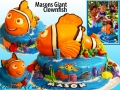 MASONS GIANT CLOWNFISH