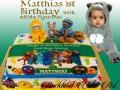 MATTHIAS 1ST BIRTHDAY
