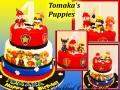 TOMAKAS PUPPIES