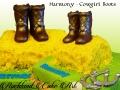 HARMONY COWBOY BOOTS