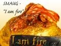 SMAUG I AM FIRE