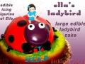 ELLES LADYBIRD