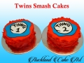 TWINS SMASH CAKES